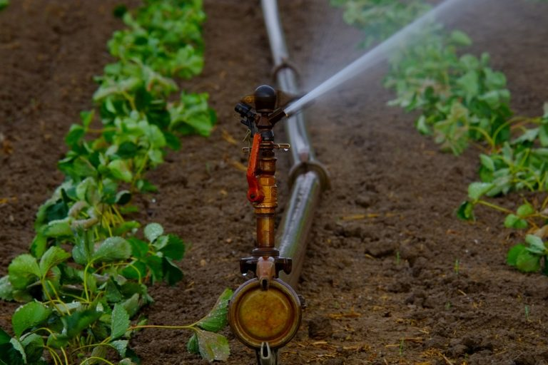 A Documentation Of Irrigation Systems for Farmers in Uganda